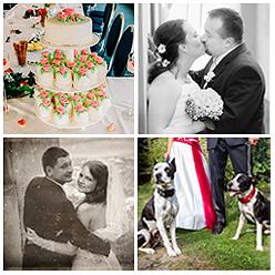 Svatební fotogalerie